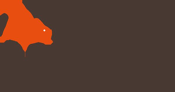 Digital Zoom